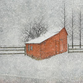 Juli Scalzi - Little Red Barn