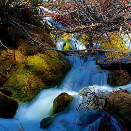 Kevin Bone - Little Water Fall