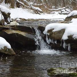 Tashia  Summers  - Little winter waterfall
