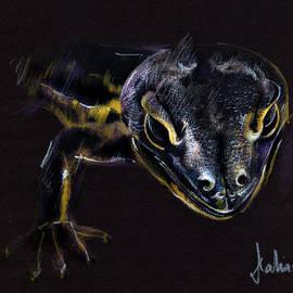 Daliana Pacuraru - Lizard