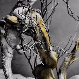 Dan Sproul - Lizard Love