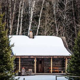 Paul Freidlund - Log Cabin