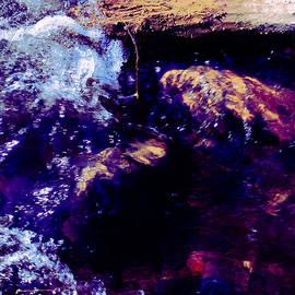 Nicole Swanger - Log in River