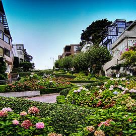 Tricia Marchlik - Lombard Street