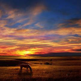 Rod Seel - Lone Horse Greenwood County
