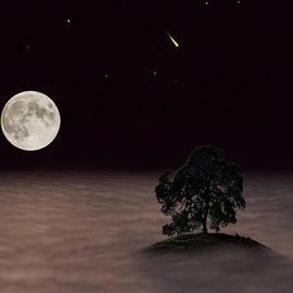 Wes Jimerson - Lone Oak
