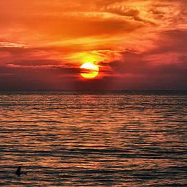 Bruce Friedman - Lone Surfer - Cardiff By The Sea - San Diego - California