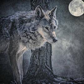 Brian Tarr - Lone Wolf
