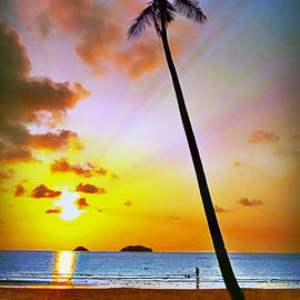 Ian Gledhill - Lonely Beach