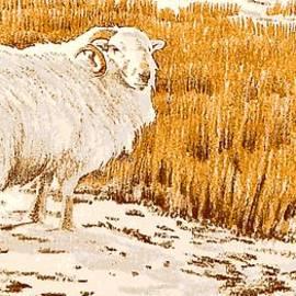 Alwyn Dempster Jones - Lonely sheep
