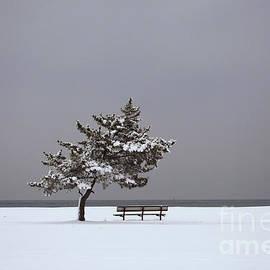 Karol Livote - Lonesome Winter