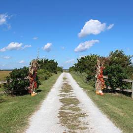 Cynthia Guinn - Long Road Home