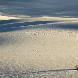 Jean Noren - Long Shadow at White Sands