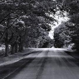 Peter Lessey - Long Way Home