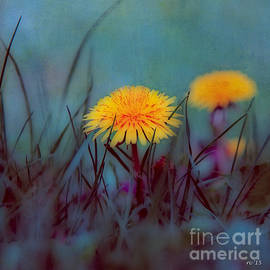Rene Crystal - Longing To See A Dandelion...