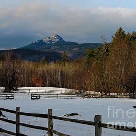 Mim White - Look to the Mountain