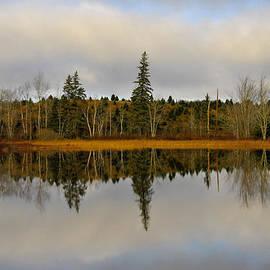 Kathleen Sartoris - Looking Glass Lake