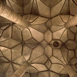 David Hohmann - Looking Up Mondsee Abby