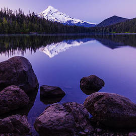 Vishwanath Bhat - Lost lake serenity