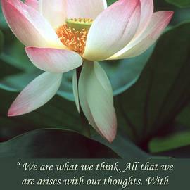Chris Scroggins - Lotus Flower Buddha Quote
