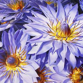 Karen Whitworth - Lotus Light - Hawaiian Tropical Floral