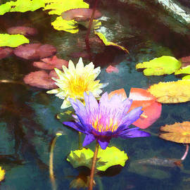 Susan Savad - Lotus Pond