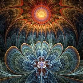 Kim Redd - Lotus Rising