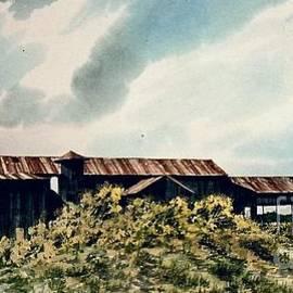 Gerald Bienvenu - Louisiana Cotton Farm
