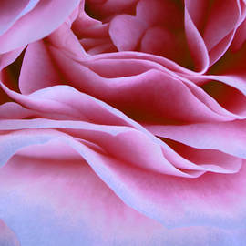 The Art Of Marilyn Ridoutt-Greene - Love and Art