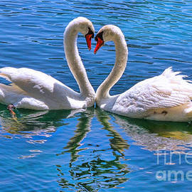 Diana Sainz - Love for Lauren on Lake Eola by Diana Sainz