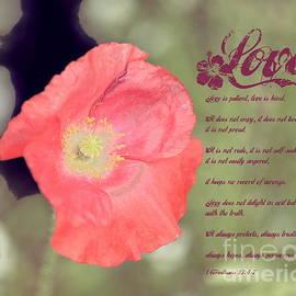 Erica Hanel - Love Is