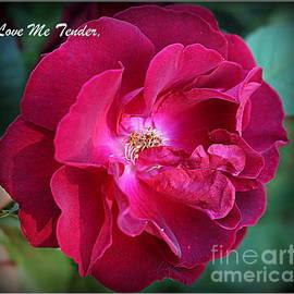 Photographic Art and Design by Dora Sofia Caputo - Love Me Tender - Greeting Card