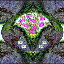 Constance Lowery - Lovely Flowered Rock