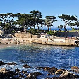 Susan Wiedmann - Lovers Point Beach