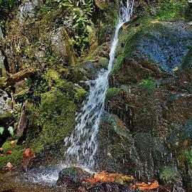Jemmy Archer - Lower Doyle River Falls 1