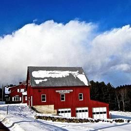 Elizabeth Tillar - Lucky Boy Farm