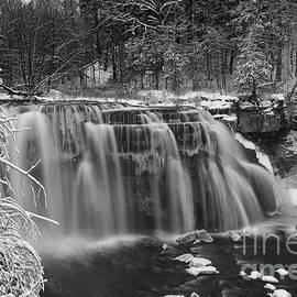 Michele Steffey - Ludlowville Falls in Winter I