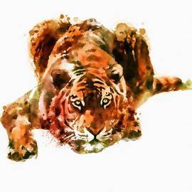 Marian Voicu - Lurking Tiger