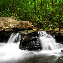 Shelby  Young - Luscious Waterfall at Moss Rock Preserve