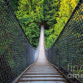 Charline Xia - Lynn Canyon Suspension Bridge