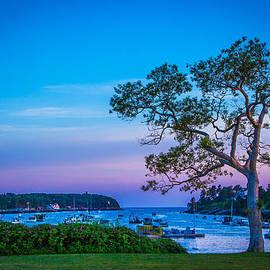 Nancy Greindl - Mackerel Cove Summer
