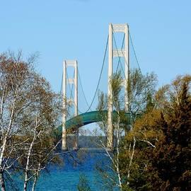 Keith Stokes - Mackinac Bridge Birches