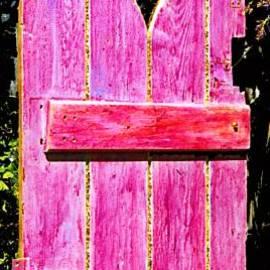 Asha Carolyn Young and Daniel Furon - Magenta Painted Door in Garden