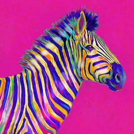 Jane Schnetlage - Magenta Zebra