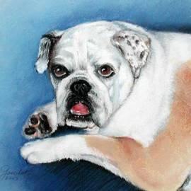 Lenore Gaudet - Maggie the Bulldog