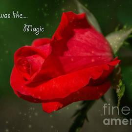 Arlene Carmel - Magic
