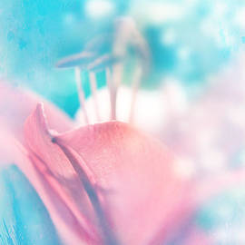 Lali Kacharava - Magic lily