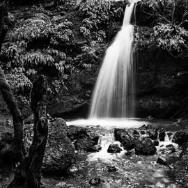 Mary Sheft - Magical California Waterfall