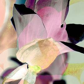 Rene Crystal - Magnolia In Abstract