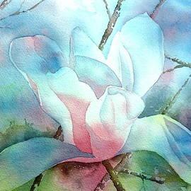 Thomas Habermann - Magnolia